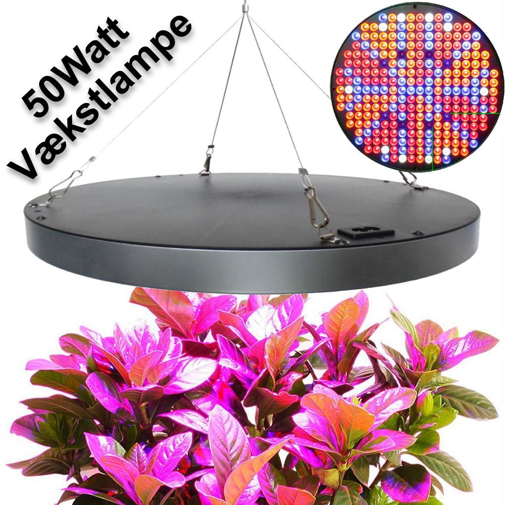 lampe uv plante quelques liens utiles lampe uv pour plante de cannabis uvb lys. Black Bedroom Furniture Sets. Home Design Ideas