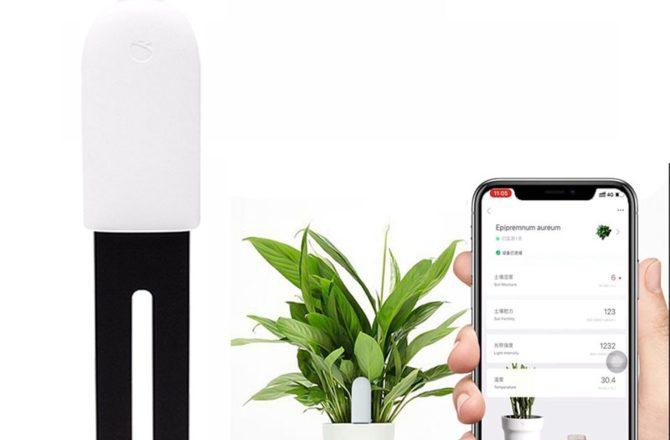 Trådløs overvågning af dine potteplanter